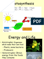 chapter 9 photosynthesis 2018