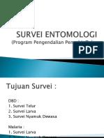 Survei Entomologi