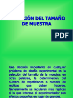 TAMAÑO DE MUESTRA - JES.ppt