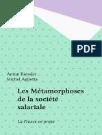 Les Metamorphoses de La Societe Salariale