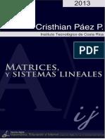 Matrices y sistemas lineales.pdf