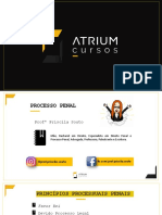 slides-aula-2-atrium-processo-penal-priscila-souto.pdf