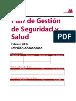 PGSSO 2017 Contratistas