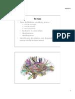 S1 Condições Neurológicas II 16-17 slide 1-48