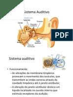 S2 Condições Neurológicas II 16-17-2