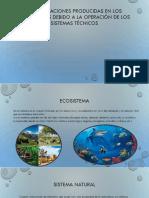 Las Alteraciones Producidas en Los Ecosistemas
