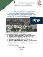 PLAN DE LACTANCIA MATERNA EXCLUSIVA DE TOTORA 2018.docx