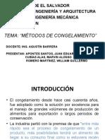 METODOS DE CONGELAMIENTO
