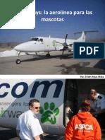 Efraín Rojas Mata Pet Airways La Aerolínea Para Las Mascotas