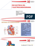 CONDUCCION ELECTRICA DEL CORAZON.pdf