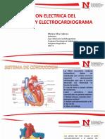 CONDUCCION ELECTRICA DEL CORAZON.pdf