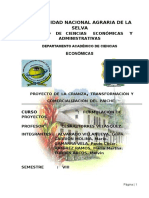 Proyecto-Paiche.pdf