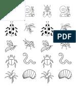 Insectos dibujos