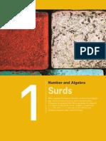Chapter 01 Surds.pdf