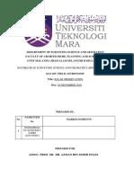 SOLAR REPORT.docx