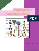 informe simp. y parasimp. fisio.docx