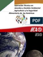 Octubre 22 CATIE-IICA.pptx