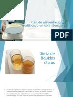 Plan de Alimentación Modificado en Consistencia