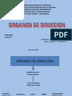 Organos de Direccion