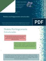 7.6 Modelos Estructurados Morfológicamente