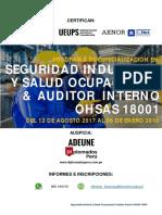 Seguridad Industrial y Salud Ocupacional & Auditor Interno OHSAS 18001 UNALM