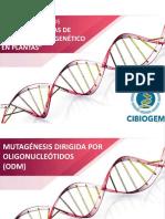 ODM.pdf