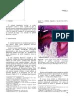 11Tegumen(1).pdf