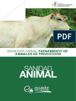 Manual Bienestar Animal en El Faenamiento