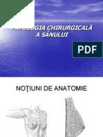 Patologia Chirurgicalc483 a Sc3a2nului