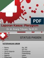 80244338 Case Pterygium Print