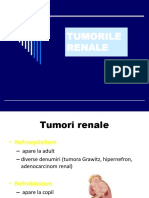 Tumorile renale modificat