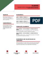 Currículo Modelo 1