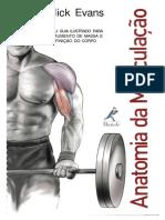 Anatomia Da Musculacao