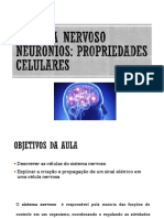 Aula - Neuronios