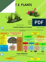 Unit 3. Plants