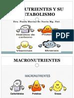 Los Nutrientes y Su Metabolismo (1).- Mattaix Macro PDF.- Mattaix Macro PDF.- Mattaix Macro PDF.- Mattaix Macro PDF
