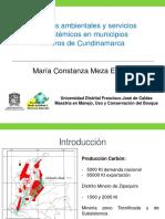 María Meza, Conflictos Ambientales y Servicios Ecosistemicos