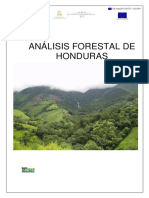 Analysis-del-Sector-Forestal-_2016.pdf