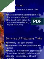 3_Background on Protozoans