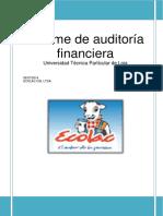 Informe de Auditoria Pymes