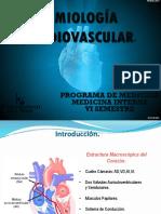 Semiología Cardiovascular (1)