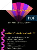 Cerebral Angiography2