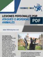1800MasyMas - Lesiones Personales Por Ataques o Mordidas de Animales