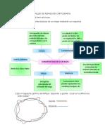 TALLER DE REPASO EN CARTOGRAFIA FINAL.pdf