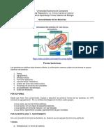 Apuntes de Microbiología_TSB