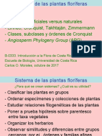 Sistema, plantas floríferas-Cronquist, APG- oct2017