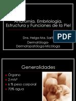 1. Anatomia y Estructura de La Piel2