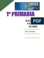 RAZ. VERBAL III BIM.doc