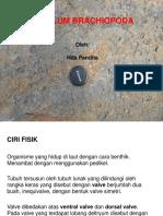 Paleontologi2015-9.pptx