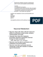 Brain Metabolism 1